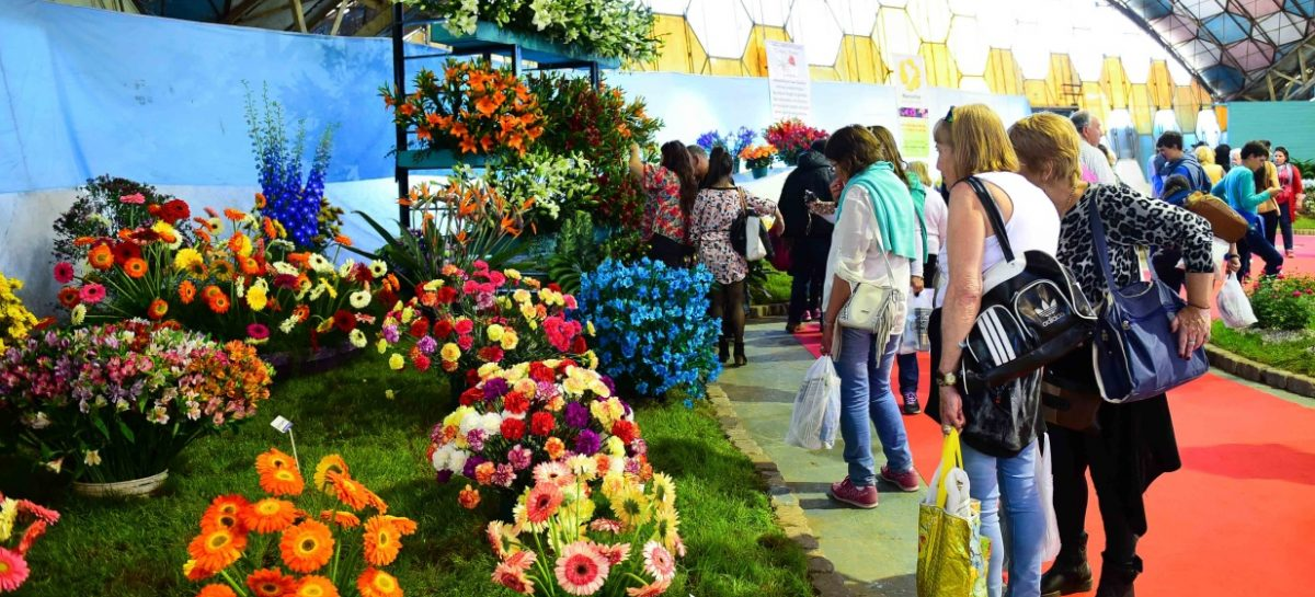 Unas 30 mil personas visitaron la Fiesta Nacional de la Flor durante el primer fin de semana de actividades