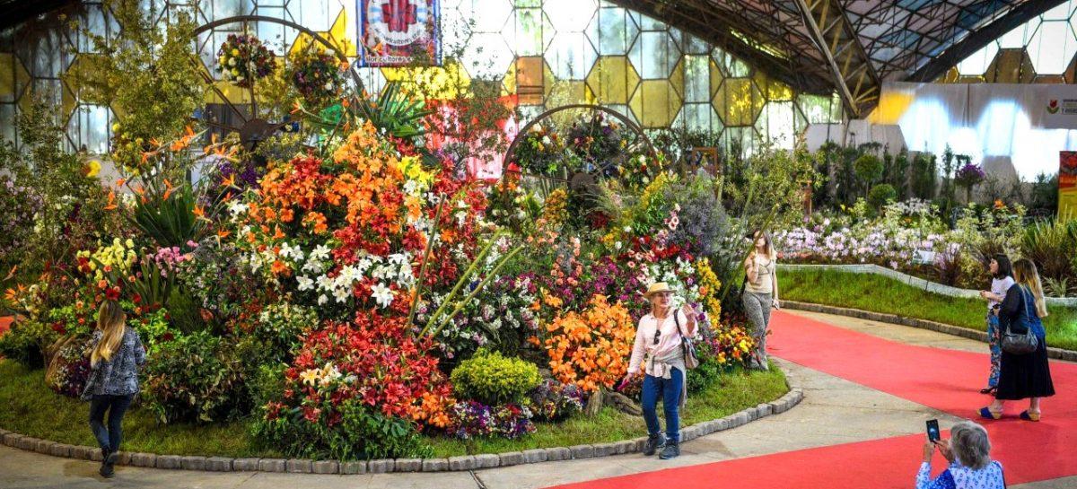 Se viene el último fin de semana de la Fiesta Nacional de la Flor, que ya convocó a más de 50 mil personas