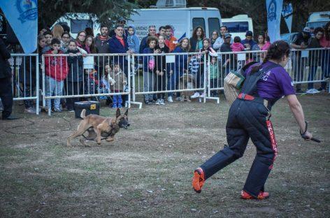 Show de circo, Festival Animal y múltiples actividades para despedir las vacaciones de invierno en Escobar