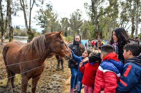 La Granja Educativa Don Benito de la Municipalidad de Escobar ya recuperó 20 animales en estado de maltrato y abandono