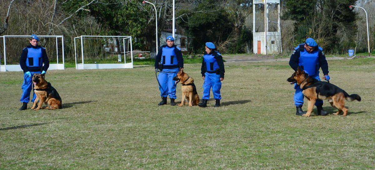 El Ministerio de Seguridad de la Provincia de Buenos Aires reconoció a la División Canina de Escobar por el esclarecimiento de un femicidio