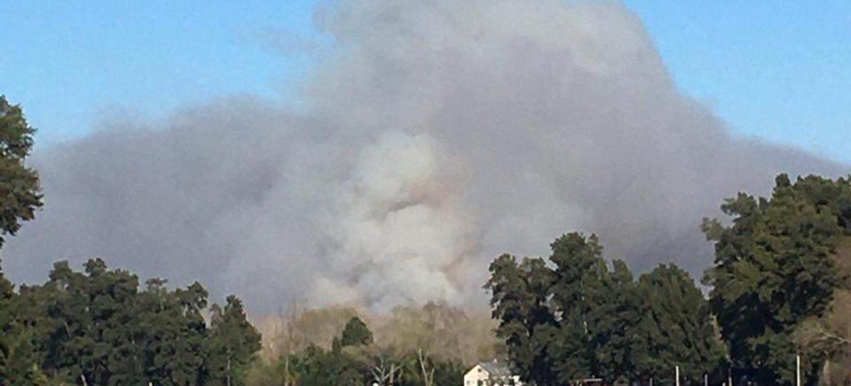 Incendio en el Delta: la municipalidad informó que las zonas pobladas no están en riesgo
