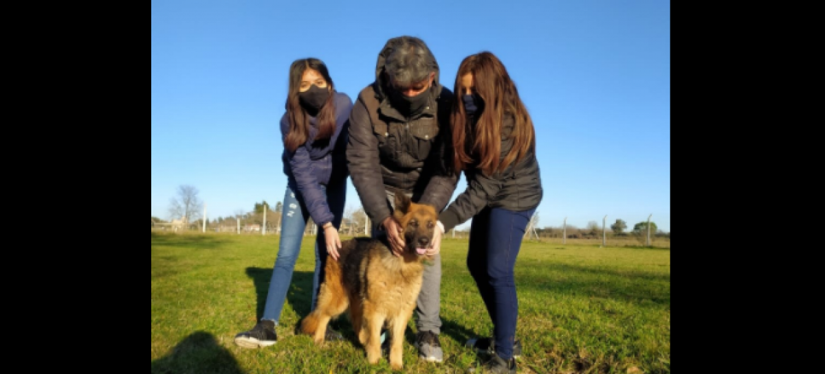 La campaña municipal #AdoptáNoCompres llegó a las 100 adopciones de mascotas