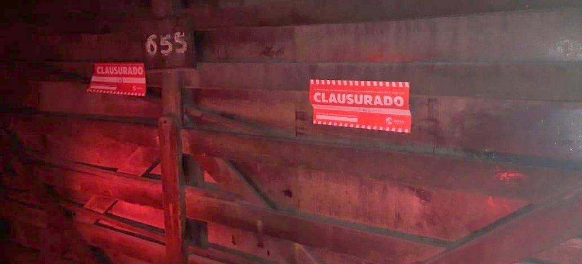 En Loma Verde, la Municipalidad de Escobar clausuró una casaquinta donde se desarrollaba una fiesta clandestina