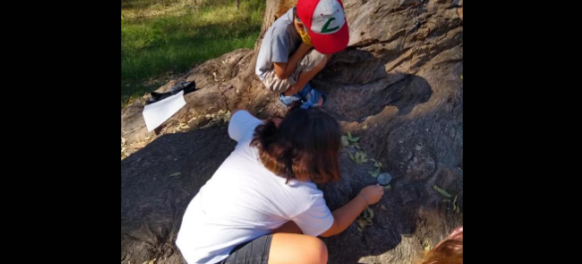 El Municipio organizó el primer encuentro de mini protectores ambientales en la Reserva Natural Educativa