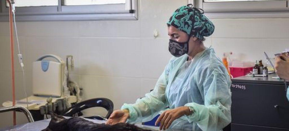 El Hospital Municipal de Zoonosis de Escobar es el elegido por la UBA para que sus estudiantes realicen las Prácticas Profesionales Supervisadas