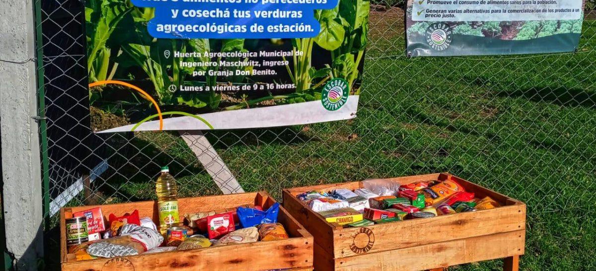 Vecinos del distrito pueden participar para fortalecer el programa Escobar Hambre Cero desde la huerta agroecológica